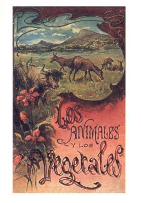 Los animales y los vegetales