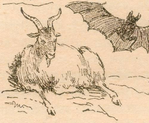La Cabra de Elena Allue